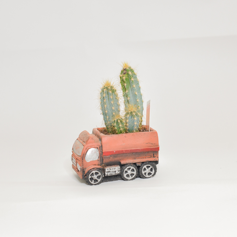 Truck Pot Design