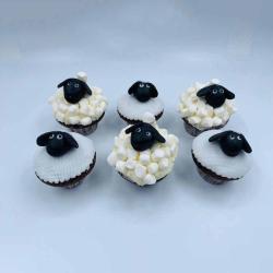 Secrets Cake sheep cupcakes 6 pieces التوصيل داخل عمان فقط